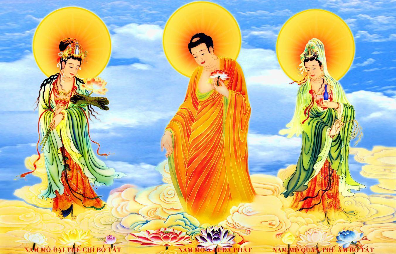 tay-phuong-cuc-lac-tg-09