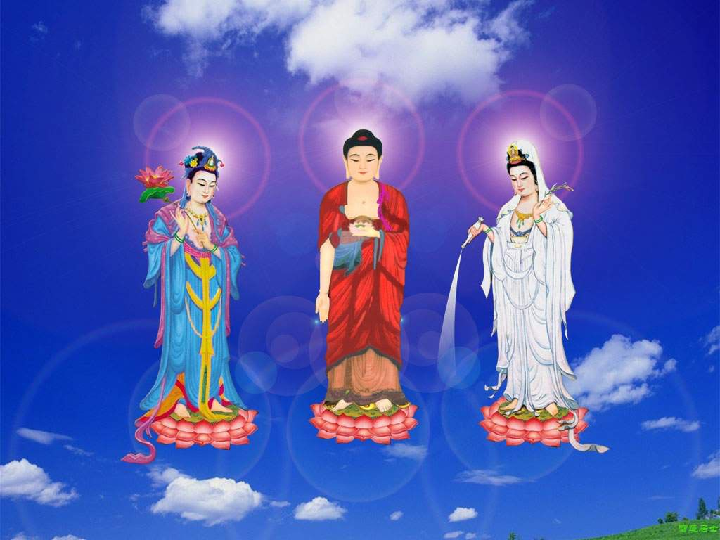 tay-phuong-cuc-lac-tg-12
