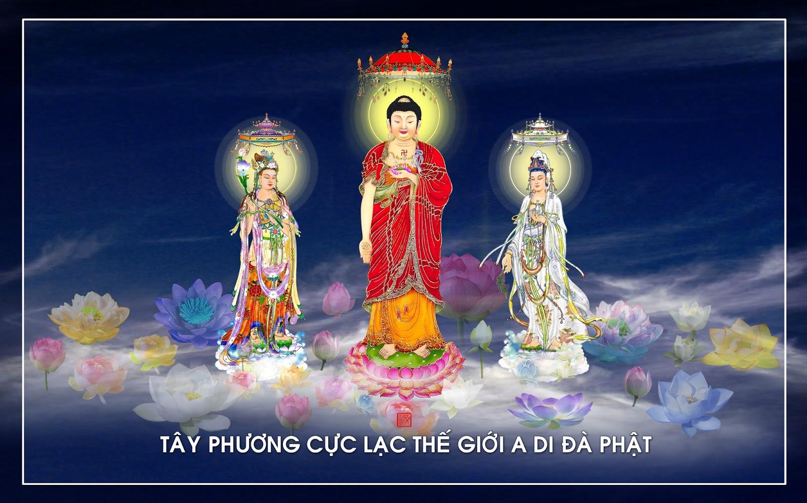 tay-phuong-cuc-lac-tg-14