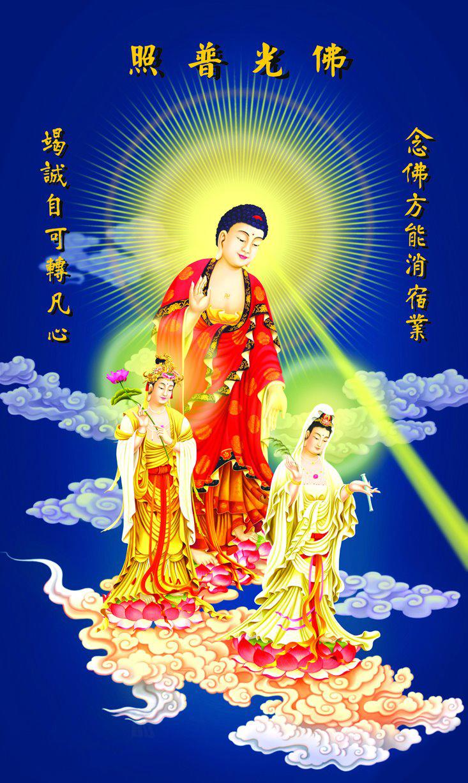 tay-phuong-cuc-lac-tg-24