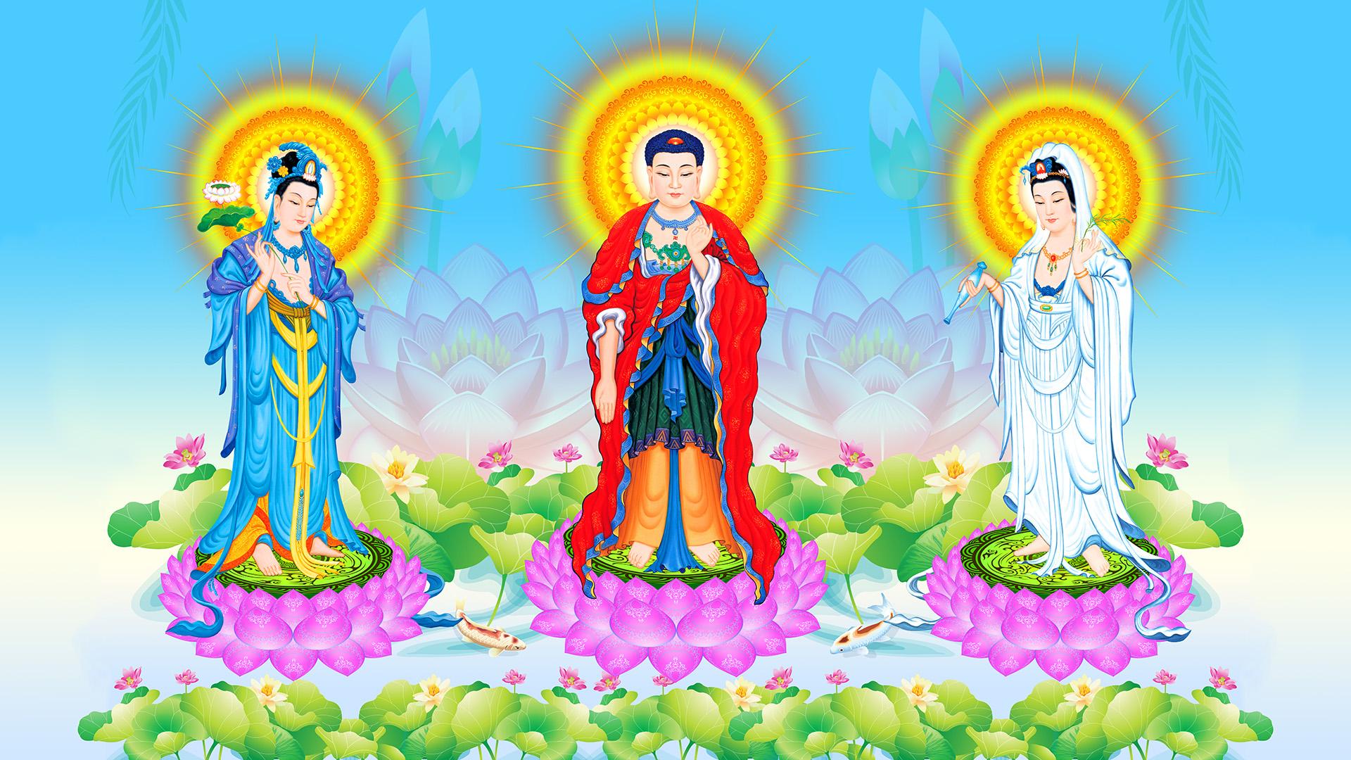 Tay-Phuong-Tam-Thanh-04