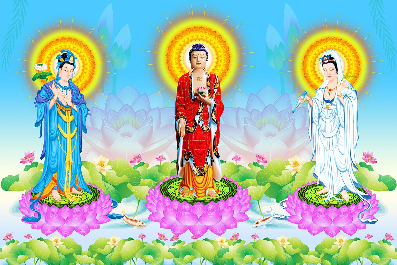 Tay-Phuong-Tam-Thanh-05